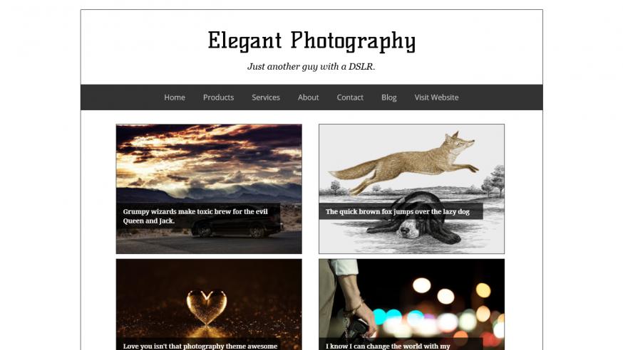 Elegant Photography